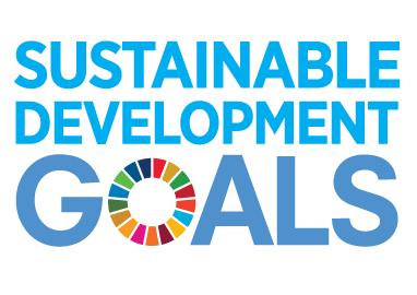 Sunstainable Development Goals logo